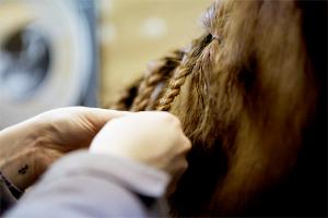 braids-002