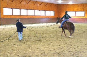 horses_ridinglessons_photo