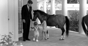 "KN-22365 22 June 1962 West Wing Colonnade President Kennedy visits with his children, John F. Kennedy Jr. and Caroline Kennedy, and pony Macaroni. Please credit ""Robert Knudsen, White House / John Fitzgerald Kennedy Library"""