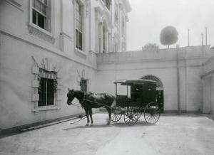 white-house-horses-06-041