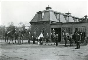 white-house-horses-06-b1