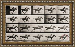 eadweard-muybridge-jockey-on-a-galloping-horse-print-l-8754-fn5_30x19