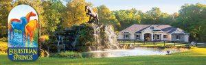 equestrian-springs-community-ocala-fl